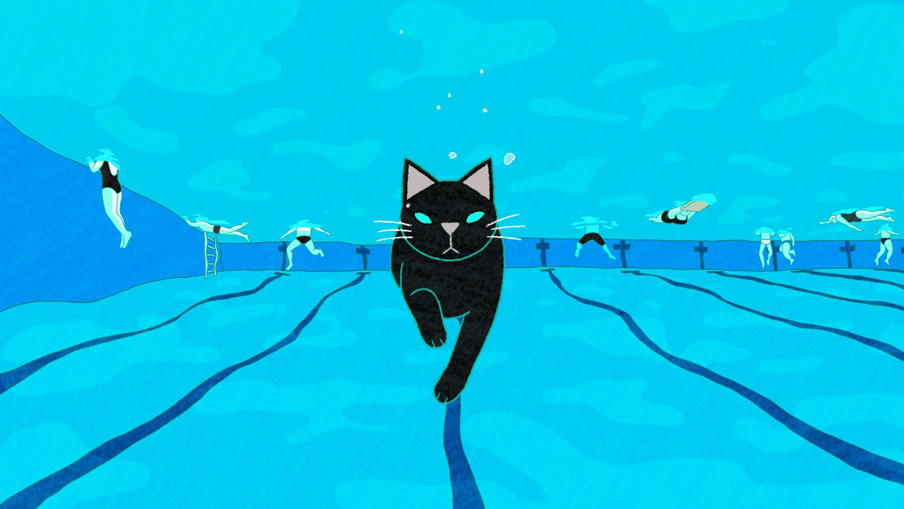 CATS IN THE POOL © AniSEED